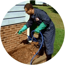 Pest control Sarasota Florida - Pest Guard Termite treatment Sarasota